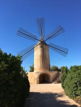 Hilton Sa Torre Mallorca review windmill