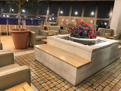 british-airways-terraces-lounge-berlin-tegel-review-flowers