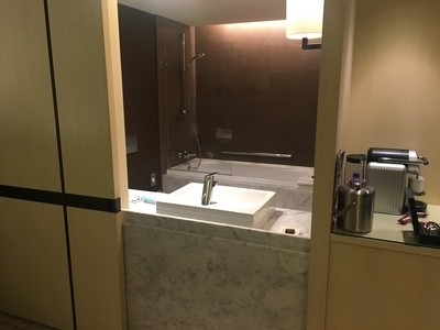 Crowne Plaza Geneva review bathroom 2