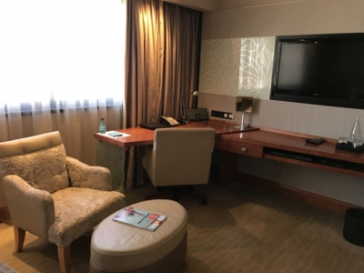 Review IHG Sandton Towers Johannesburg