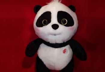 Air China Pilot Panda