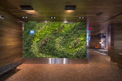 Amex centurion lounge living wall