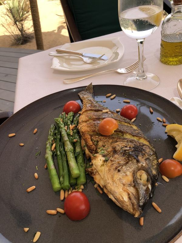 Marriott Al Maha Desert Resort Dubai fish