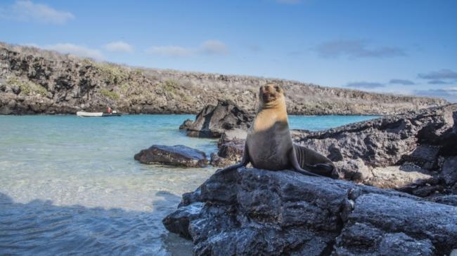 Review Finch Bay Galapagos Hotel, Ecuador