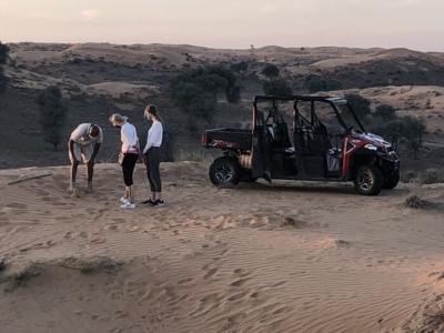 Review Ritz Carlton Al Wadi Desert resort hotel Ras Al Khaimah