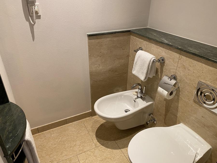 St Regis Mardavall toilet