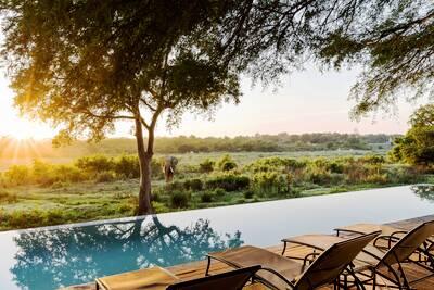 Kruger Safari Marriott Week of Wonders